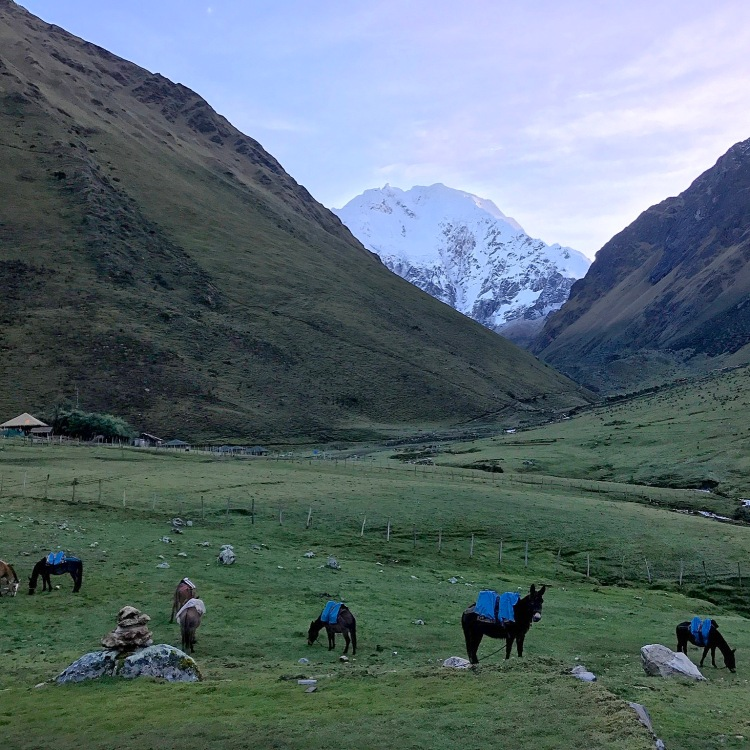 Salkantay Mountain - Inside the Salkantay Trek to Machu Picchu - www.afternoonstroll.com